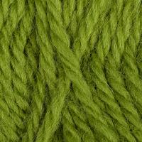 Пряжа для вязания КАМТ 'Аргентинская шерсть' (100% импортная п/т шерсть) 10х100г/200м цв.130 липа