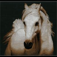 Набор для вышивания мулине НИТЕКС арт.0028 Хлоя 42х40 см